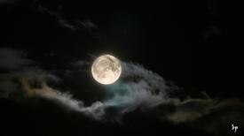 spooky_moon_by_blackpa