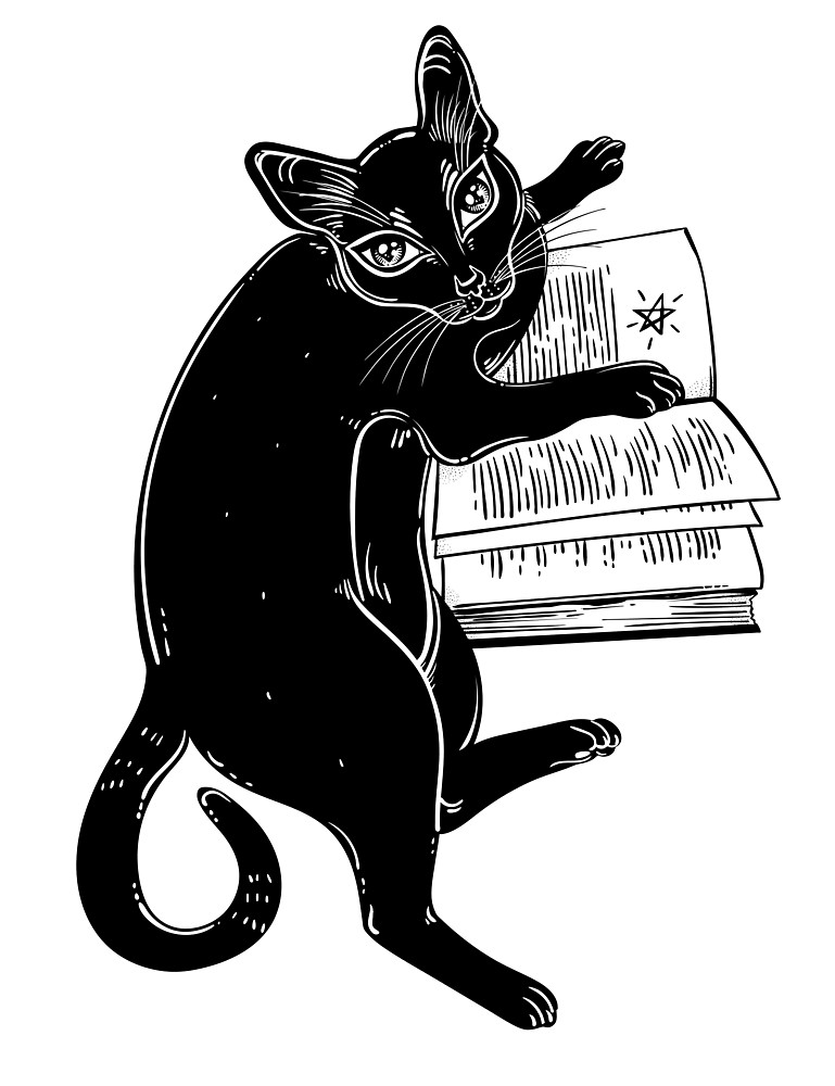 Black cat reading a magic book