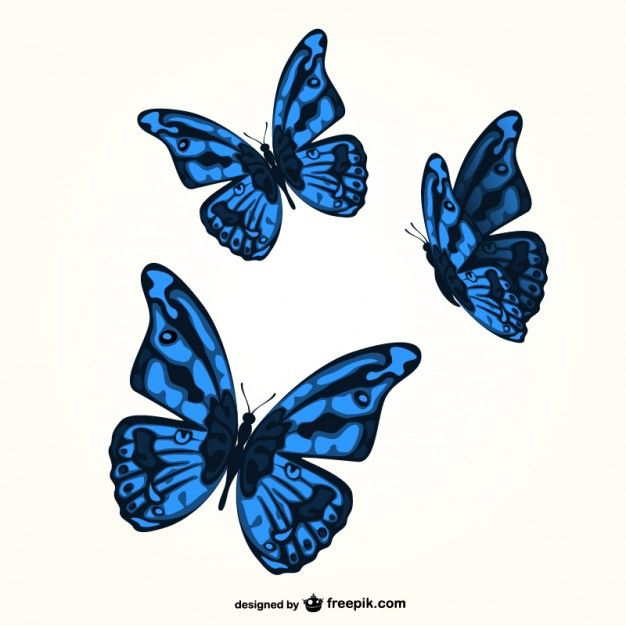 blue butterflies x 3